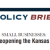 Surveying Small Businesses: COVID & Reopening the Kansas Economy